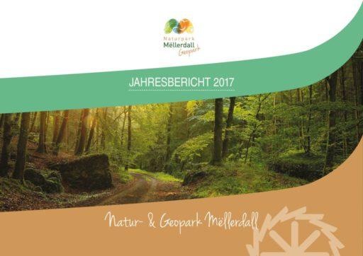 thumbnail of Jahresbericht_NPM_2017_mittel