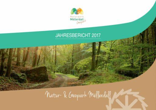 thumbnail of Jahresbericht_def_2017_web