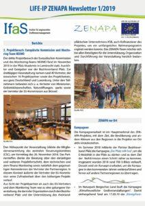 thumbnail of ZENAPA_Newsletter_01_2019