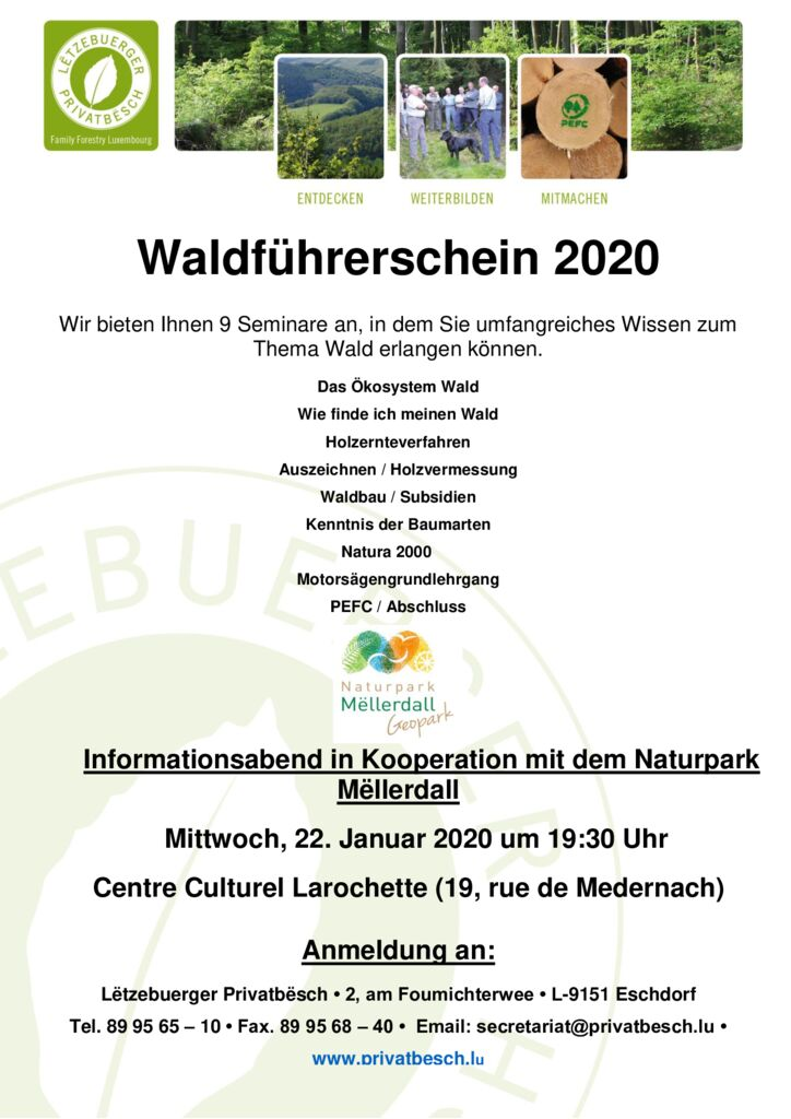 thumbnail of Flyer, Poster WFS 2020
