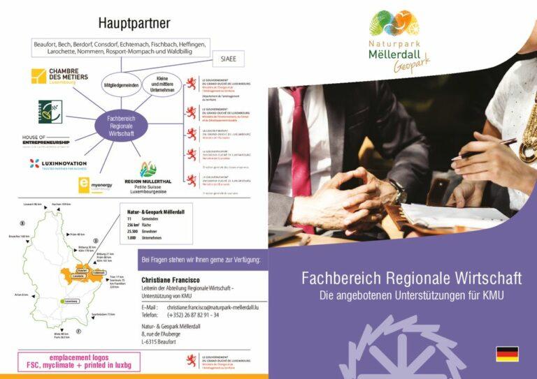 thumbnail of NGPM_Economie régionale assistance proposée aux PME_DE – VF
