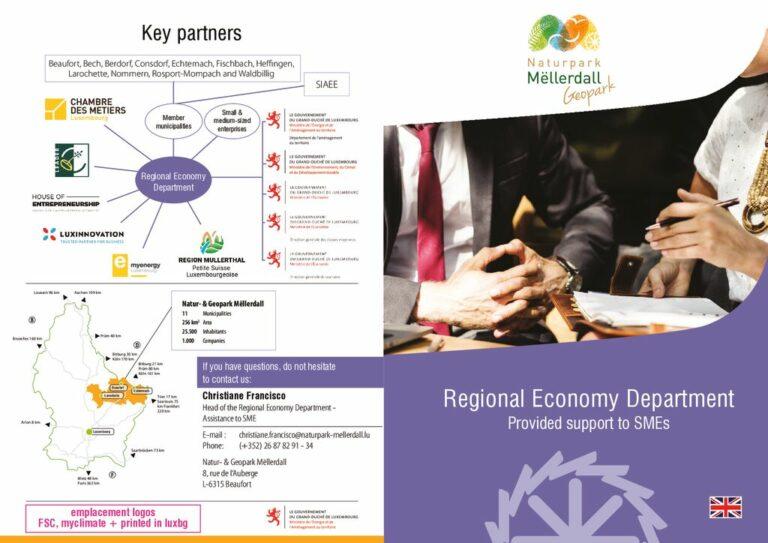 thumbnail of NGPM_Economie régionale assistance proposée aux PME_EN – VF
