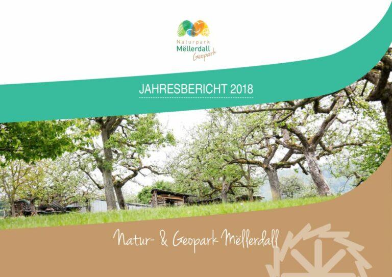 thumbnail of Jahresbericht_def_2018_web