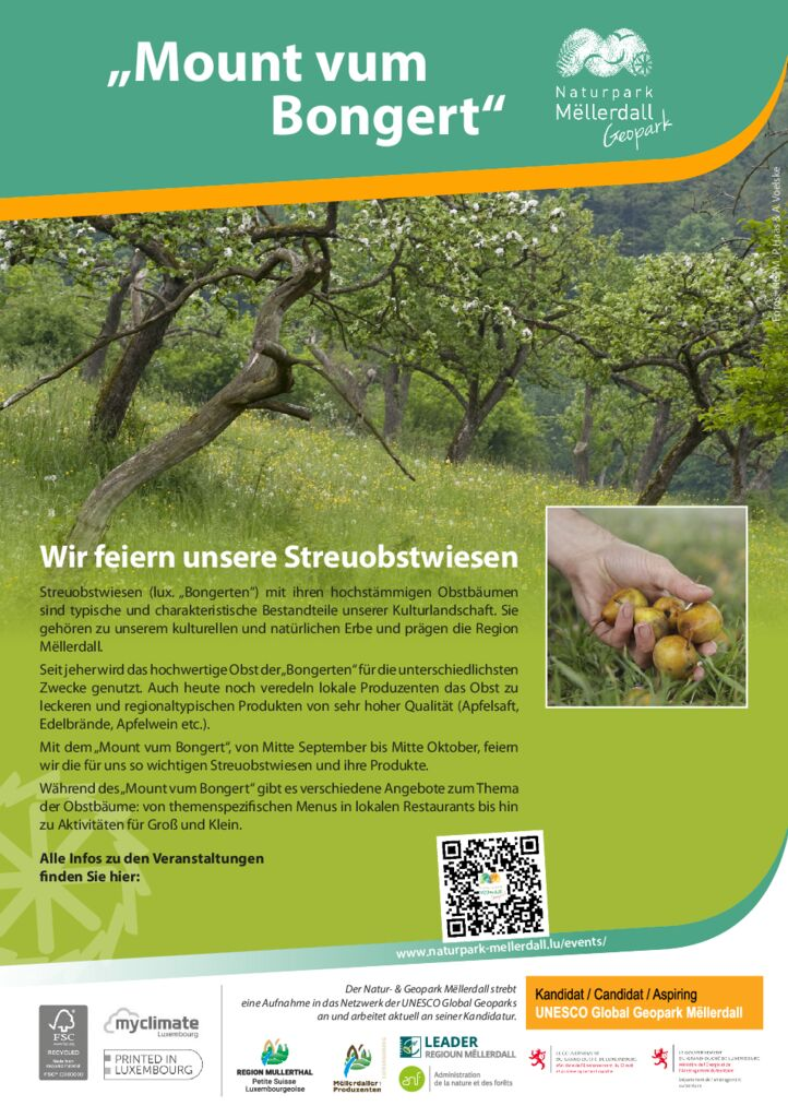 thumbnail of Flyer_Mount-vum-Bongert_OK