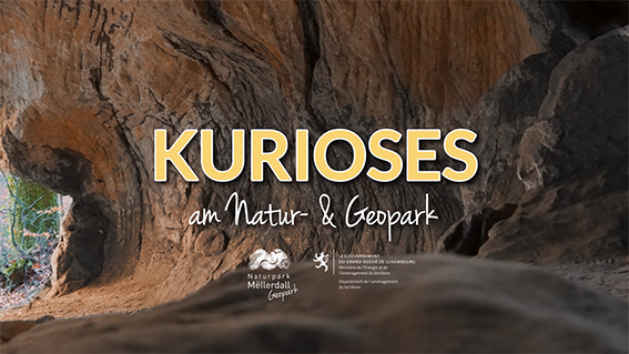 Video series : Fascinating Facts about the Natur- & Geopark